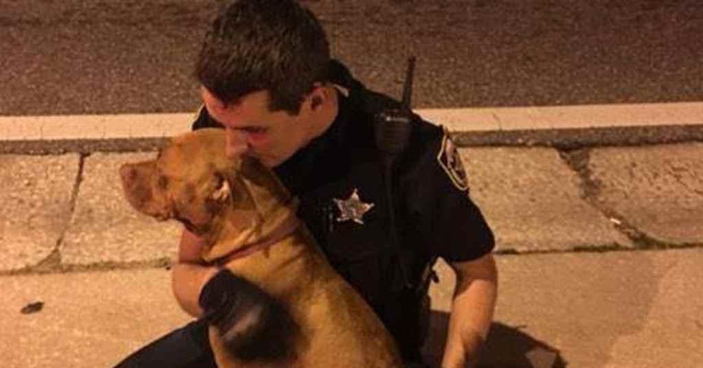 hond gered door agenten 1