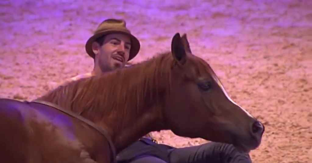 paardenwedstrijd 3