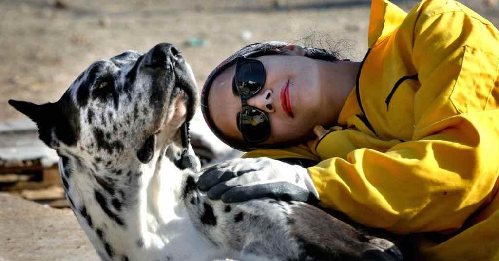 vriendschap met een hond 2