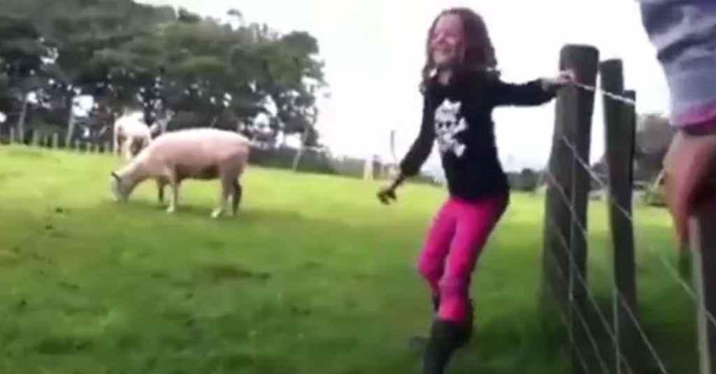 weiland schaap 1