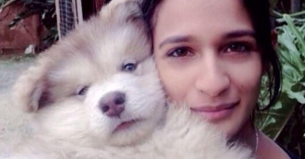 hondenvoedsel 4