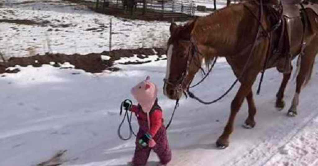 paard en meisje zijn beste vrienden 2