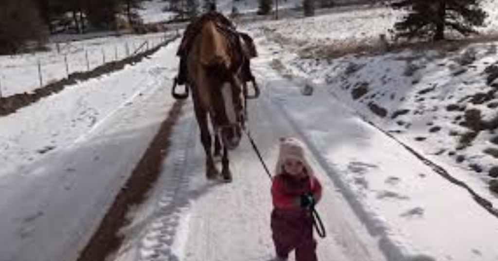 paard en meisje zijn beste vrienden 3