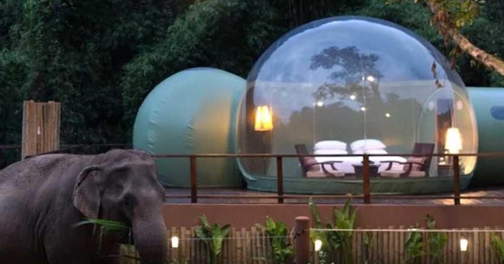 olifanten hotel 1a