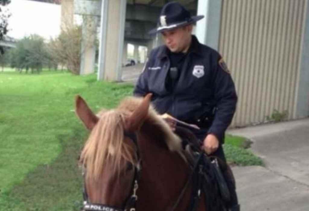 stervend politiepaard 3a
