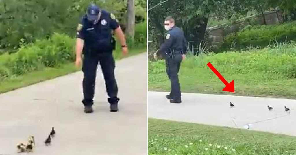 zorgzame politieagent 4